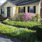 Neighbor Spotlight: Community