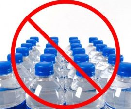 GO GREEN Needham – Here's How:  Say No to Bottled Water