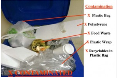 Needham RTS Recycling Tips:  Contaminated Recycling is Trash