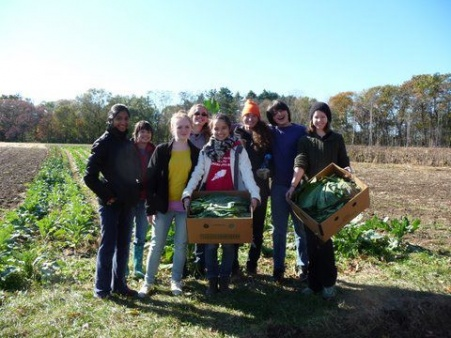 Boston Area Gleaners at a Farm