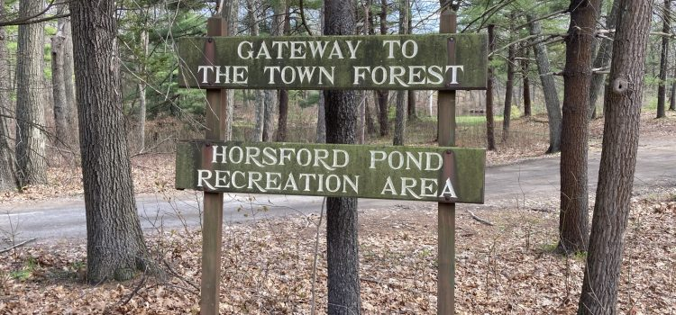 Town Forest Cleanup Saturday, May 1st with the NHS Environmental Action Club